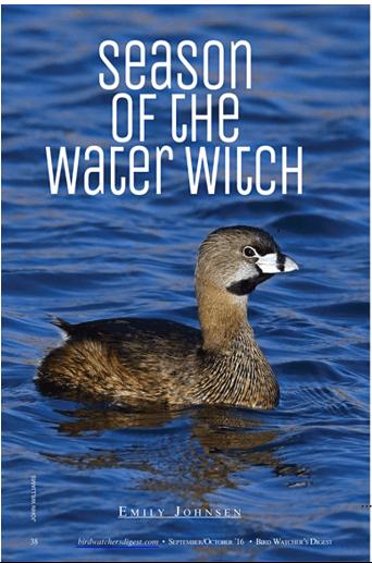 Season of the Water Witch www.emilyljohnsen