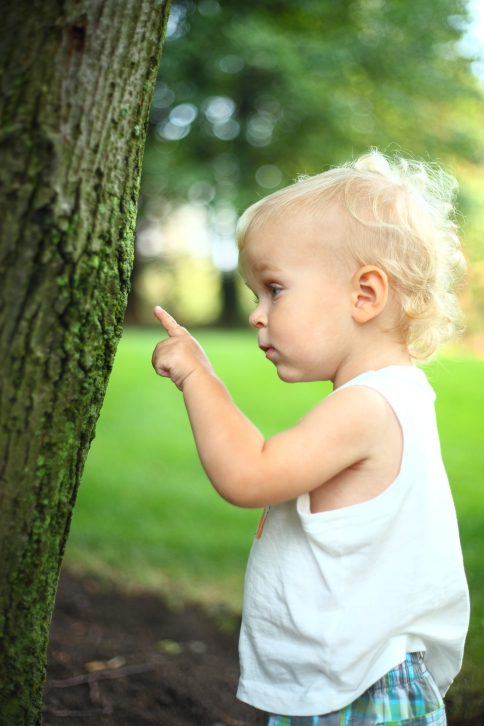Baby boy pointing on a tree
